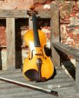 My violin,  named 'Salamandar'  by its maker D J Tatem, basking in the Keswick sun.